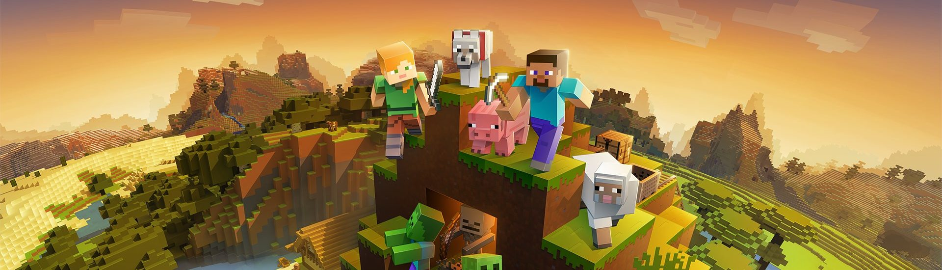 MinecraftZ